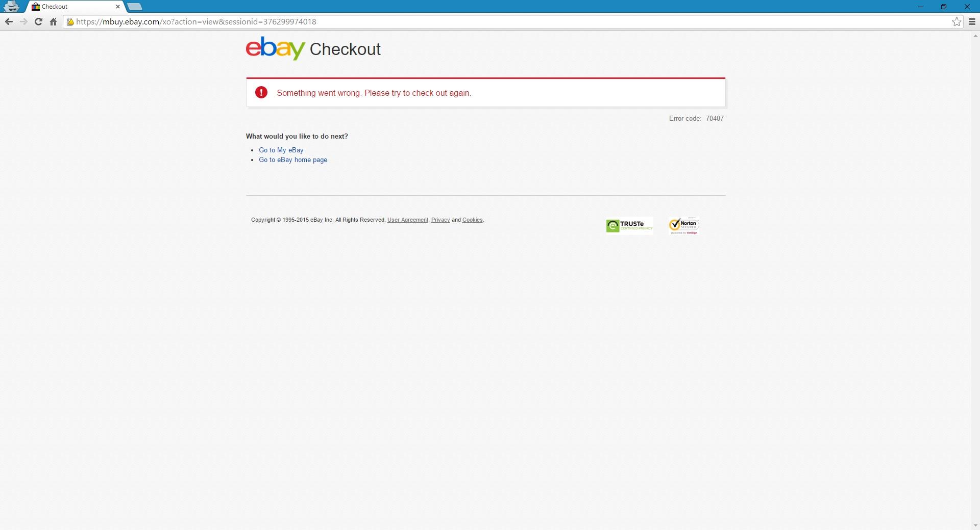 eBay Checkout error message--> Something went wron    - The eBay