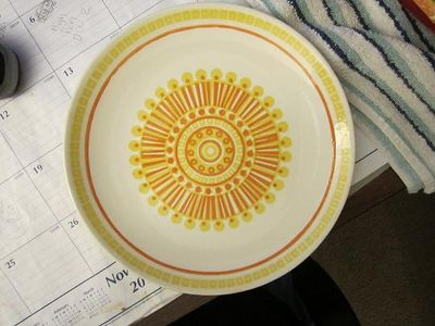 re large plate size.jpg