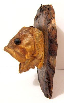 FISH HEAD (1).JPG